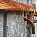Rusty Latch by olivetreeann