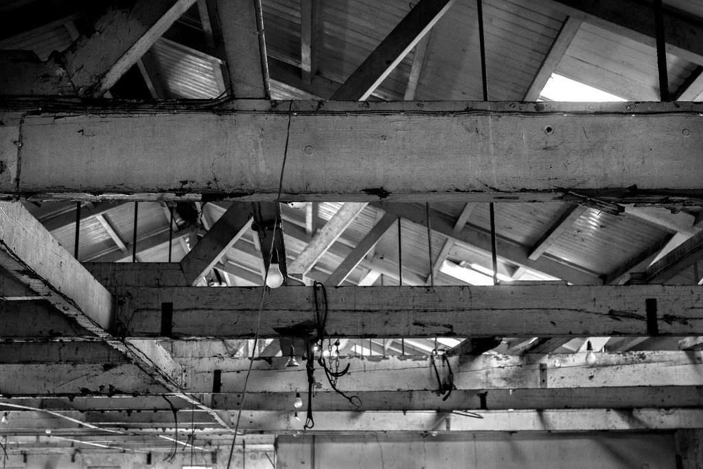 Rafters by graemestevens