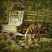 Buckboard  by joysfocus