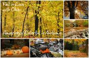 17th Nov 2014 - Amazing Autumn in Ohio Ad