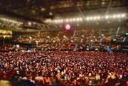 18th Nov 2014 - Among the 13 000....