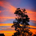 Technicolor sunset by danette