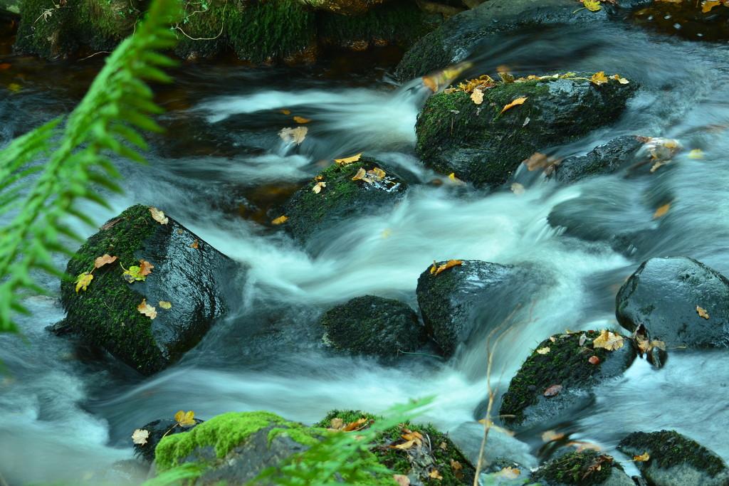 Stream - Dwygyfylchi # 3 by ziggy77