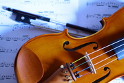 20th Nov 2014 - Violin