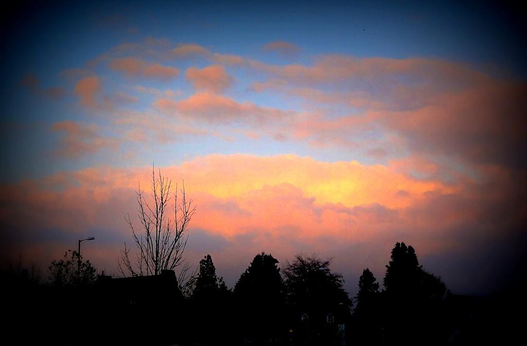Evening sky ! by beryl