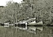 22nd Nov 2014 - Shipwreck