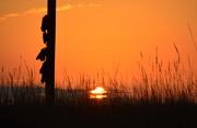21st Nov 2014 - Redneck Sunrise