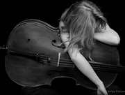 21st Nov 2014 - Cello Drama