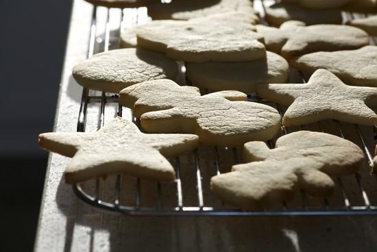 Sugar Cookies by kwind