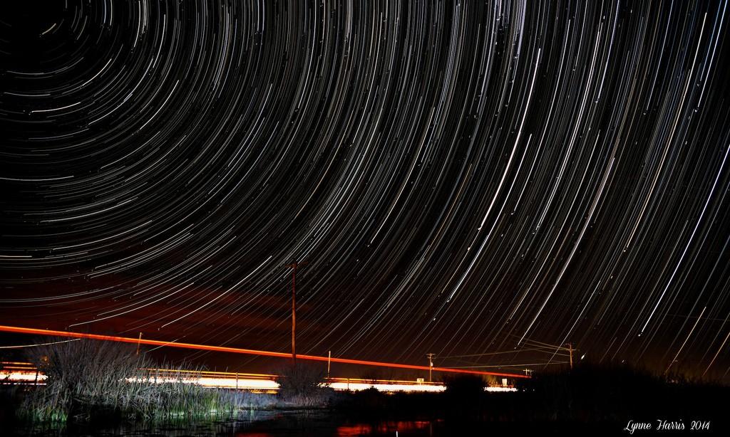 Star Trails by lynne5477