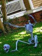 24th Oct 2010 - Happy Halloween Week
