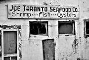 25th Nov 2014 - Joe Taranto Seafood Co.