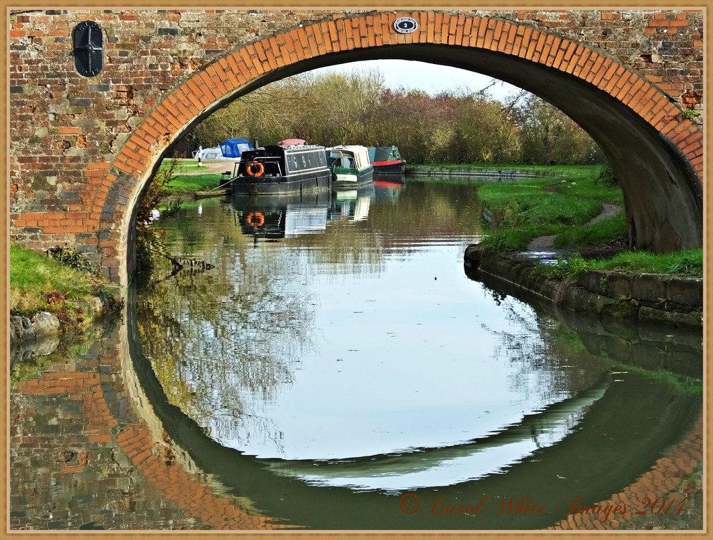 Through The Bridge by carolmw