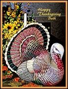 26th Nov 2014 - Happy Thanksgiving