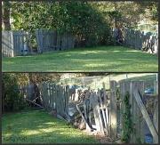 27th Oct 2010 - Garden