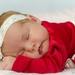 Cuddle Baby