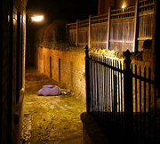 27th Nov 2014 - Down and Out in Arnold
