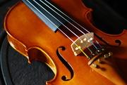 29th Nov 2014 - Violin