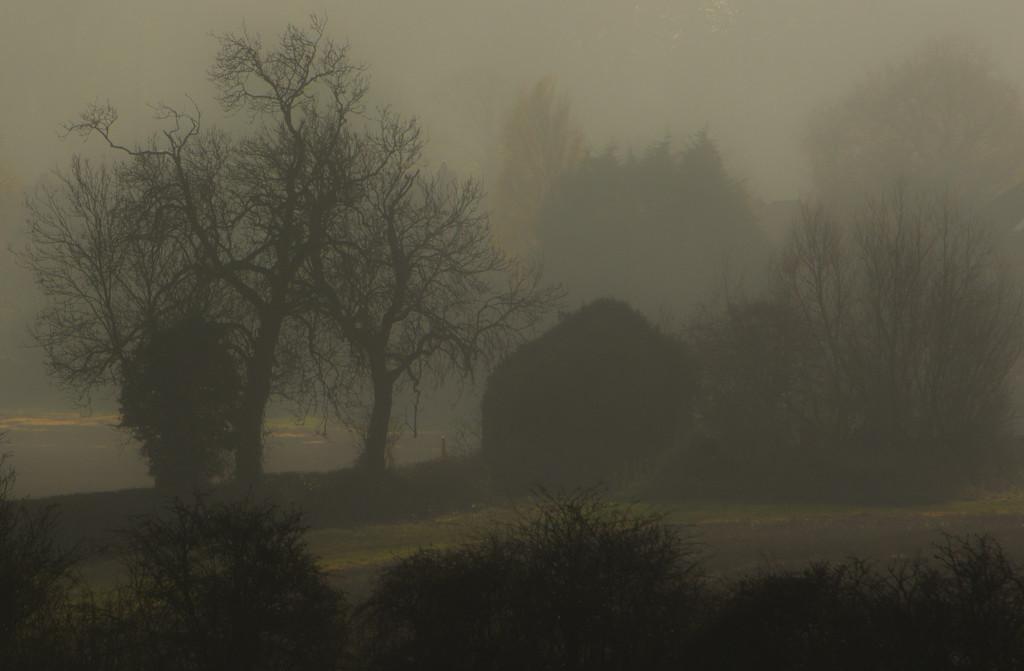 Another mist shot by shepherdman