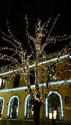 30th Nov 2014 - Christmas lights in the city