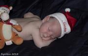 1st Dec 2014 - Christmas baby