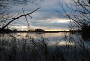 1st Dec 2014 - Across the lake