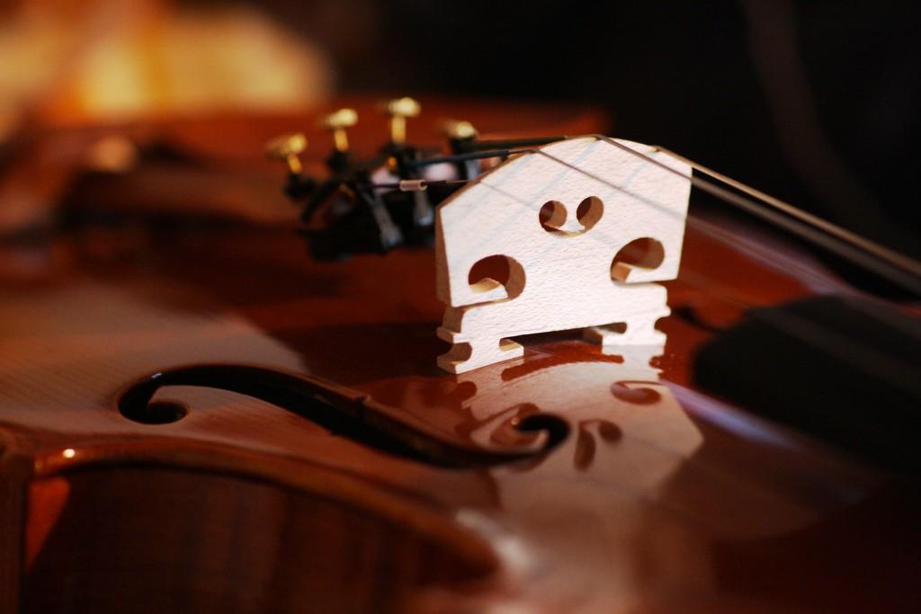Violin Bridge by sarahlh