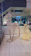 2nd Dec 2014 - Christmas lights at the mall