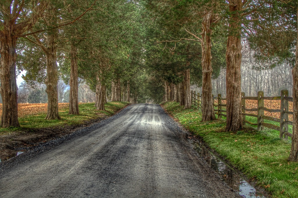 The Road Less Traveled by sbolden