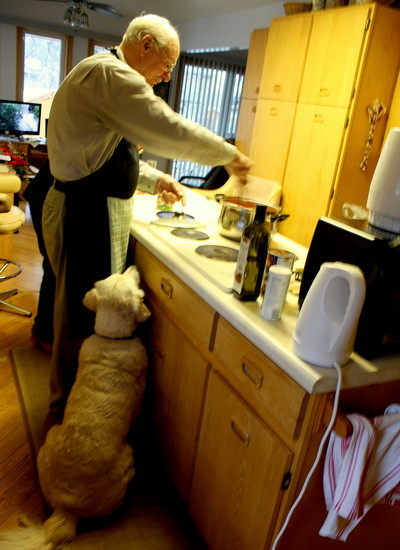 Doggy watching the Chef by bruni