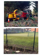 3rd Dec 2014 - 3rd December 2014 - Trees or the tennis court?