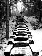 3rd Dec 2014 - Stairway to Heaven!