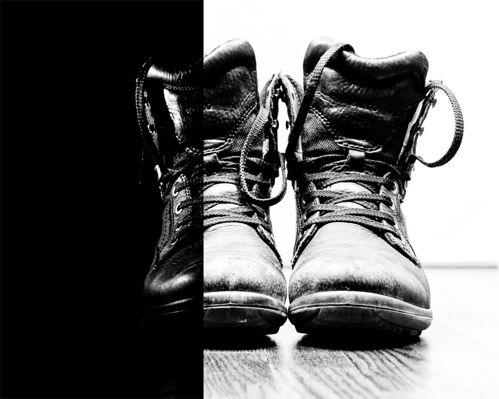 stompin' night and day by northy