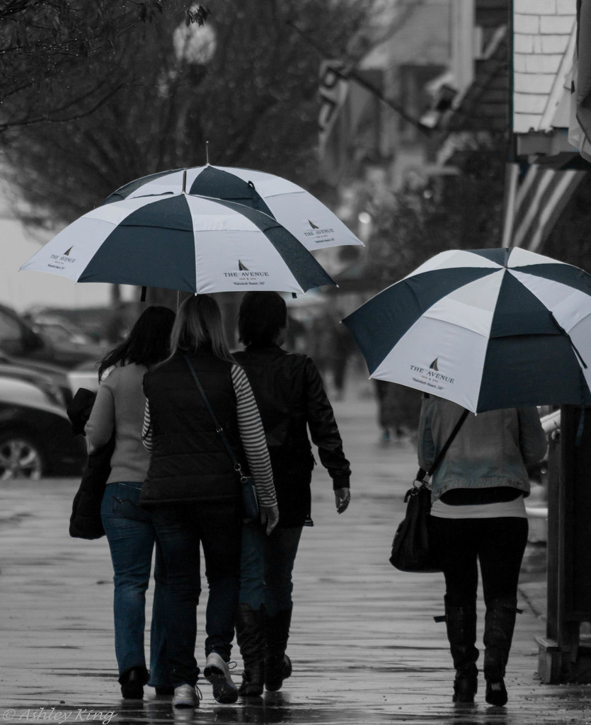 Matching Umbrellas, Take II by shesnapped