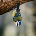Hanging around - 10-12 by barrowlane