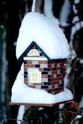 11th Dec 2014 - Winter's Back!