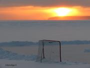 11th Dec 2014 - Hockey Anyone?
