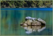 19th Nov 2014 - Blue Lake