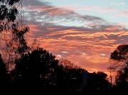 28th Oct 2010 - Sunrise