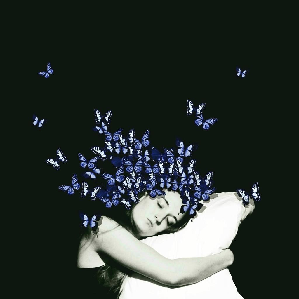 Sleeps With Butterflies by fiveplustwo