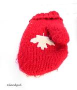 12th Dec 2014 - Red Mitten