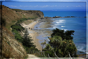 10th Dec 2014 - Cape Kidnappers