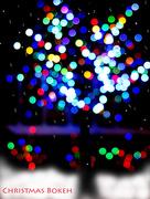 12th Dec 2014 - Christmas bokeh!