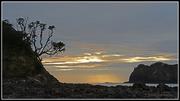 13th Dec 2014 - Matapouri Bay...