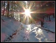 13th Dec 2014 - The Guiding Light