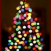 Holiday 14 - Bokeh tree with smilies
