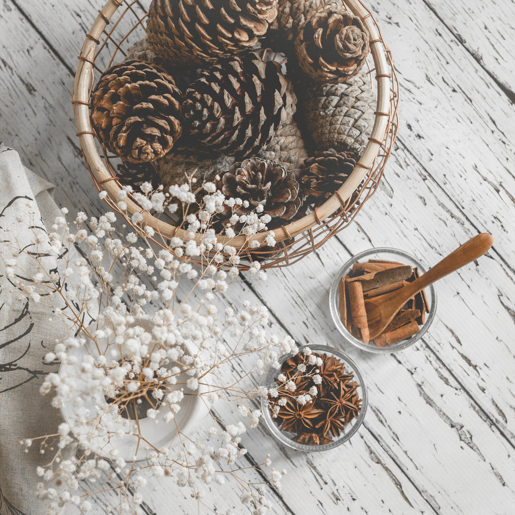 Still life with pine cones and spices by suebarni