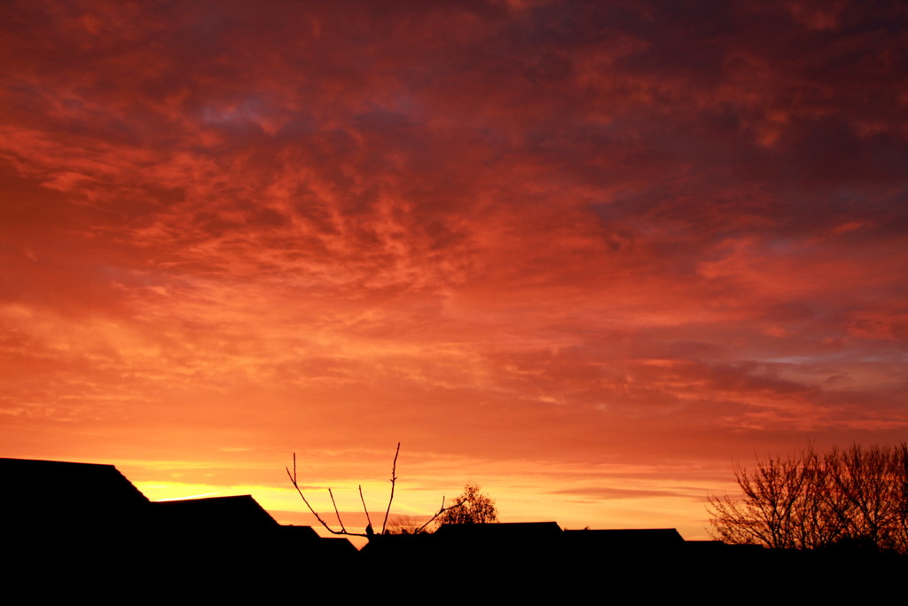 Red sky in the morning by busylady