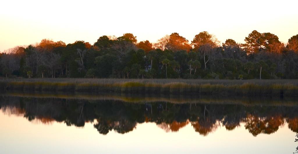 Ashley River at Magnolia Gardens by congaree