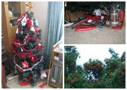 17th Dec 2014 - Christmas Is All Wrapped Up